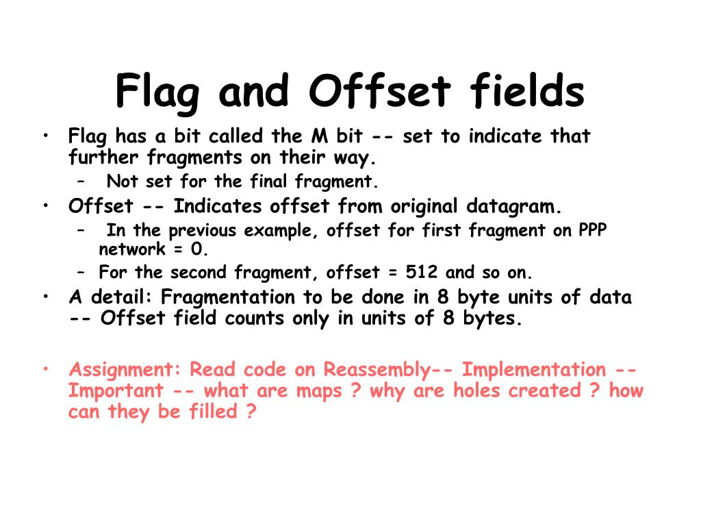 Flag and Offset fields