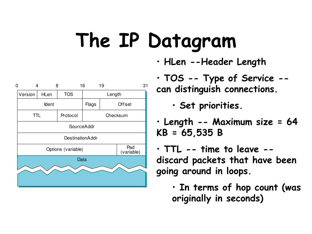 The IP Datagram
