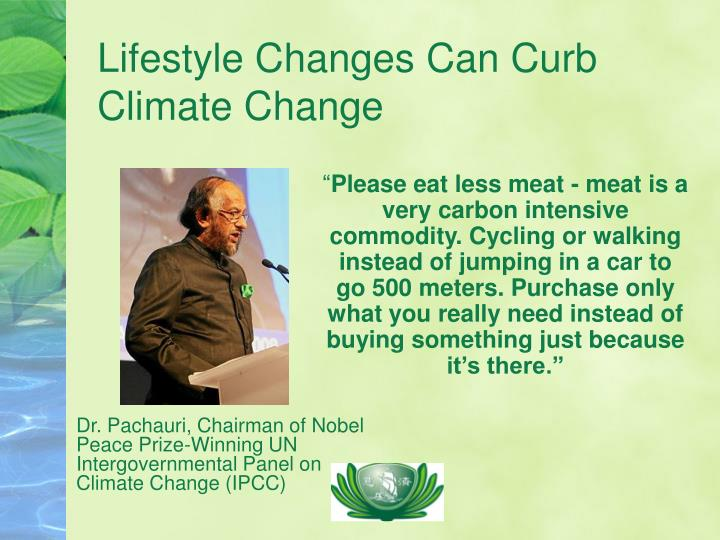 Lifestyle changes can curb climate change