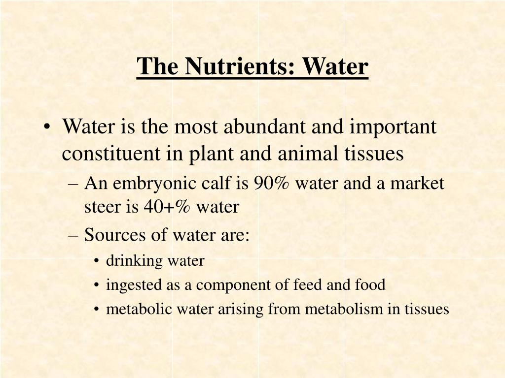 The Nutrients: Water