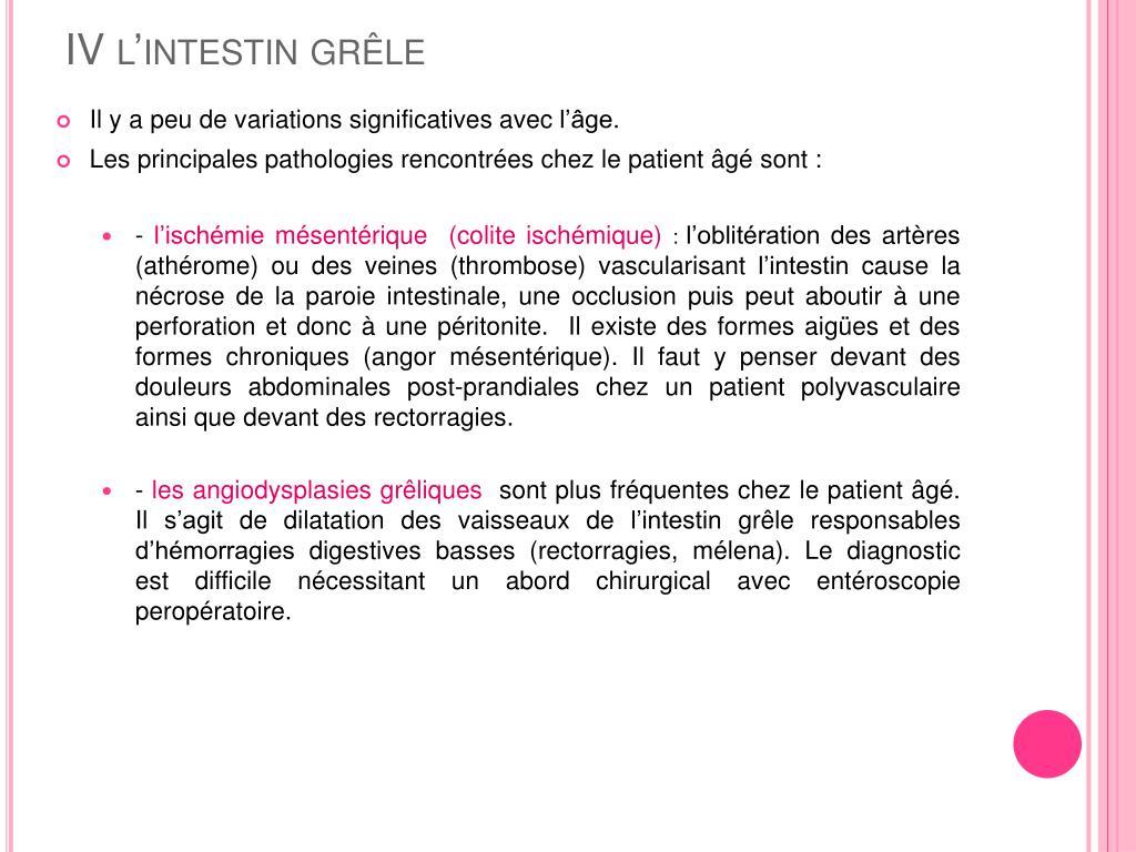 IV l'intestin grêle