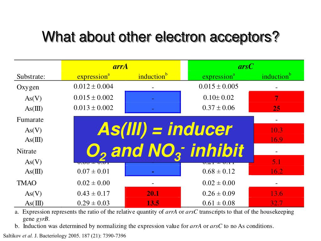 What about other electron acceptors?
