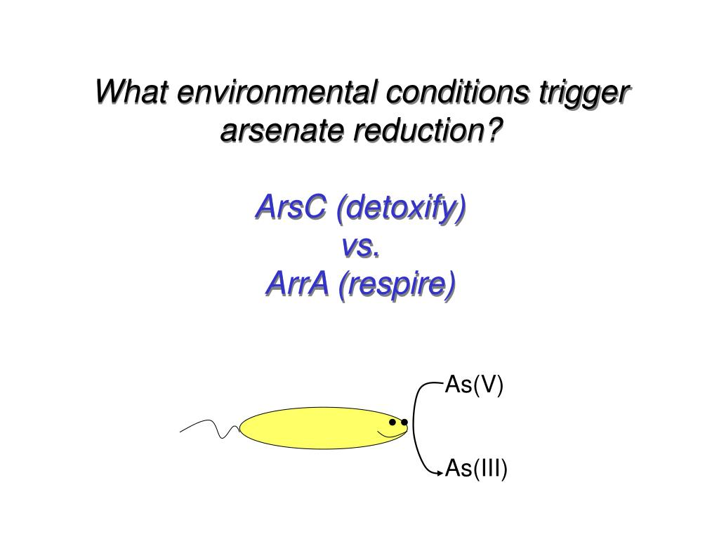 What environmental conditions trigger arsenate reduction?