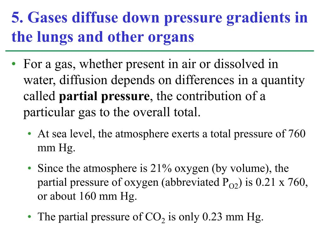 For a gas, whether present in air or dissolved in water, diffusion depends on differences in a quantity called