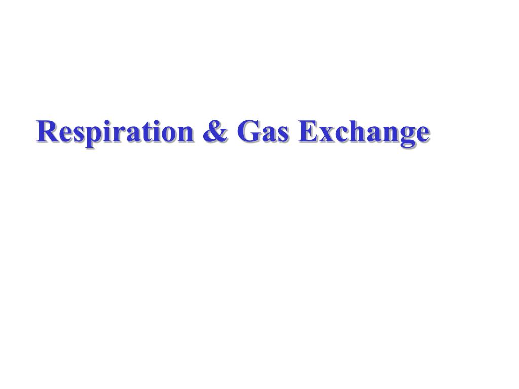 Respiration & Gas Exchange