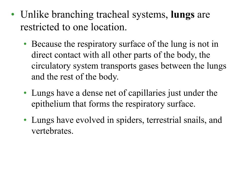 Unlike branching tracheal systems,