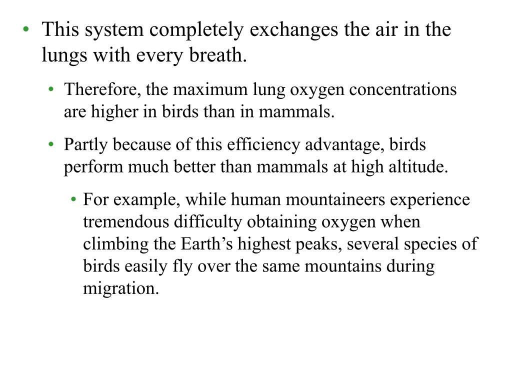 This system completely exchanges the air in the lungs with every breath.