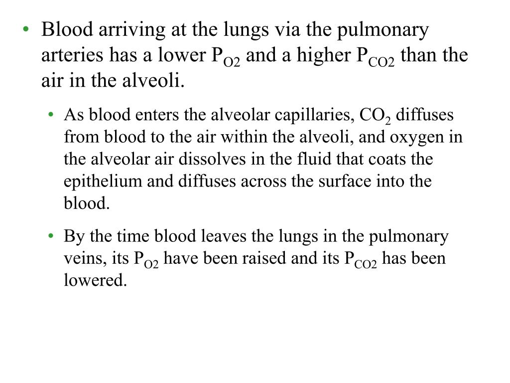 Blood arriving at the lungs via the pulmonary arteries has a lower P