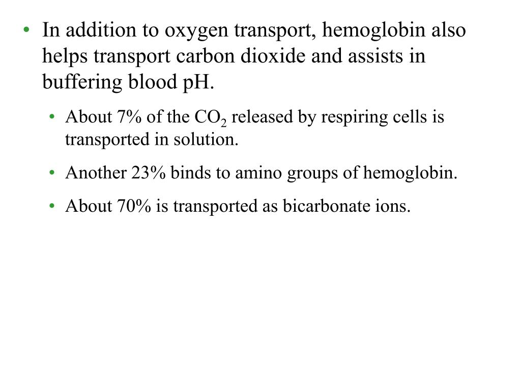 In addition to oxygen transport, hemoglobin also helps transport carbon dioxide and assists in buffering blood pH.