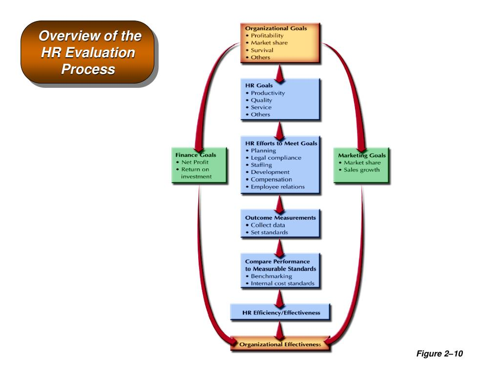 Overview of the HR Evaluation Process