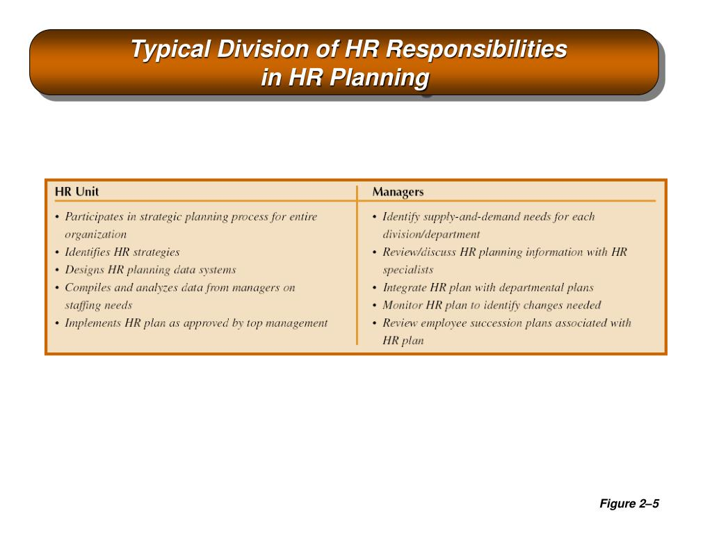 Typical Division of HR Responsibilities