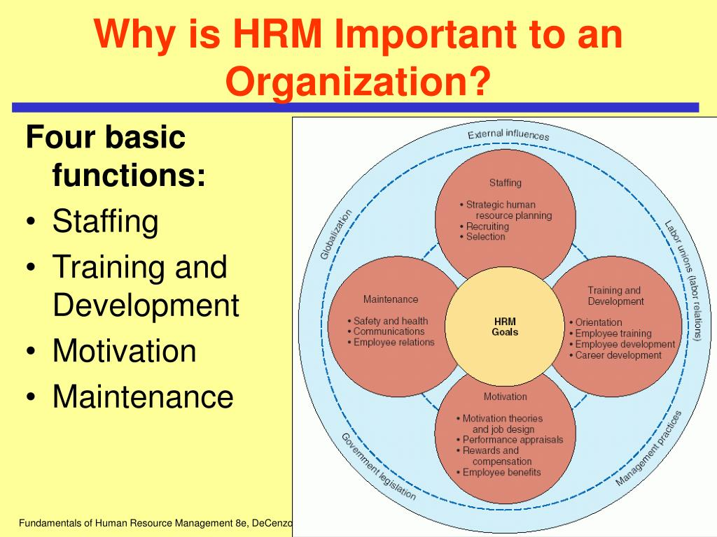 Why is HRM Important to an Organization?