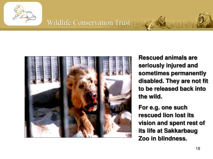 Rescued animals are seriously injured and sometimes permanently disabled. They are not fit to be released back into the wild.
