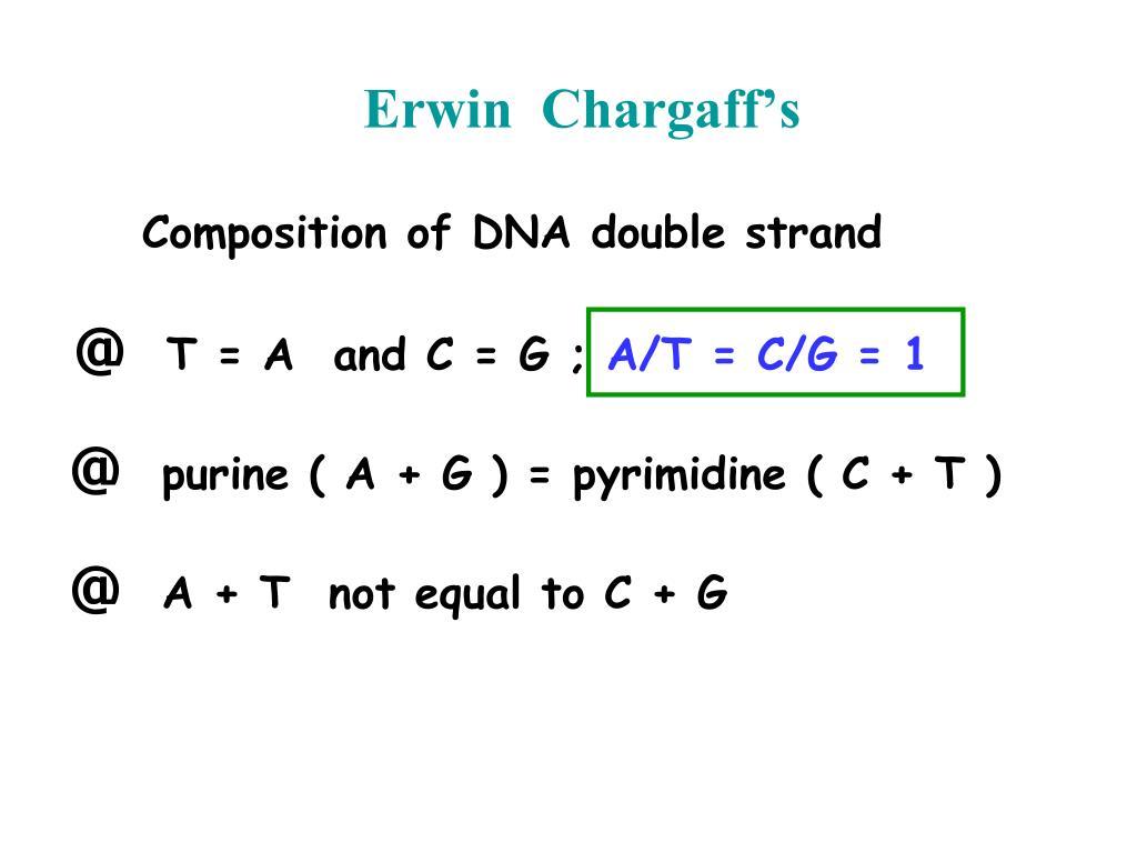 Erwin  Chargaff's