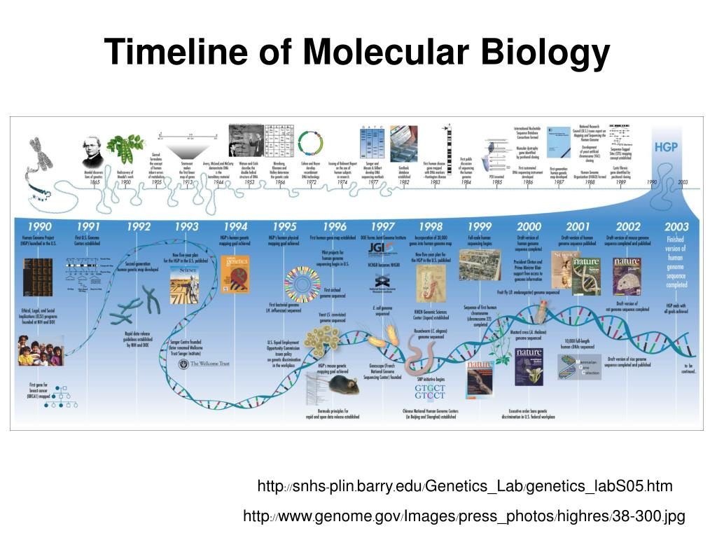 Timeline of Molecular Biology