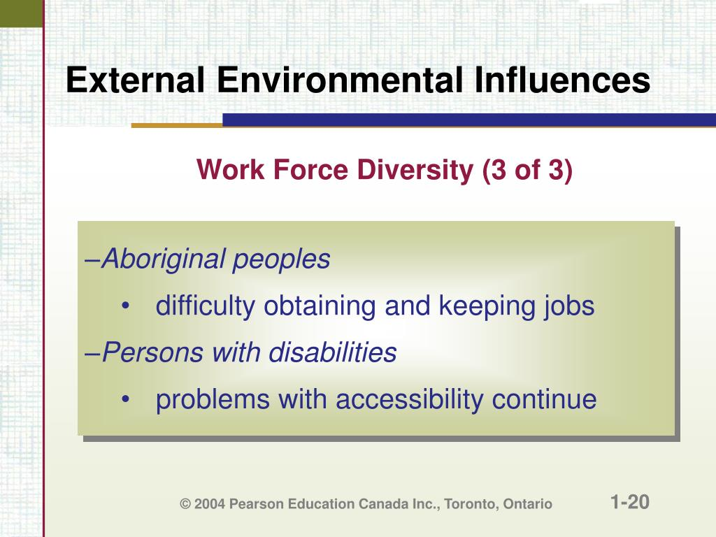Work Force Diversity (3 of 3)