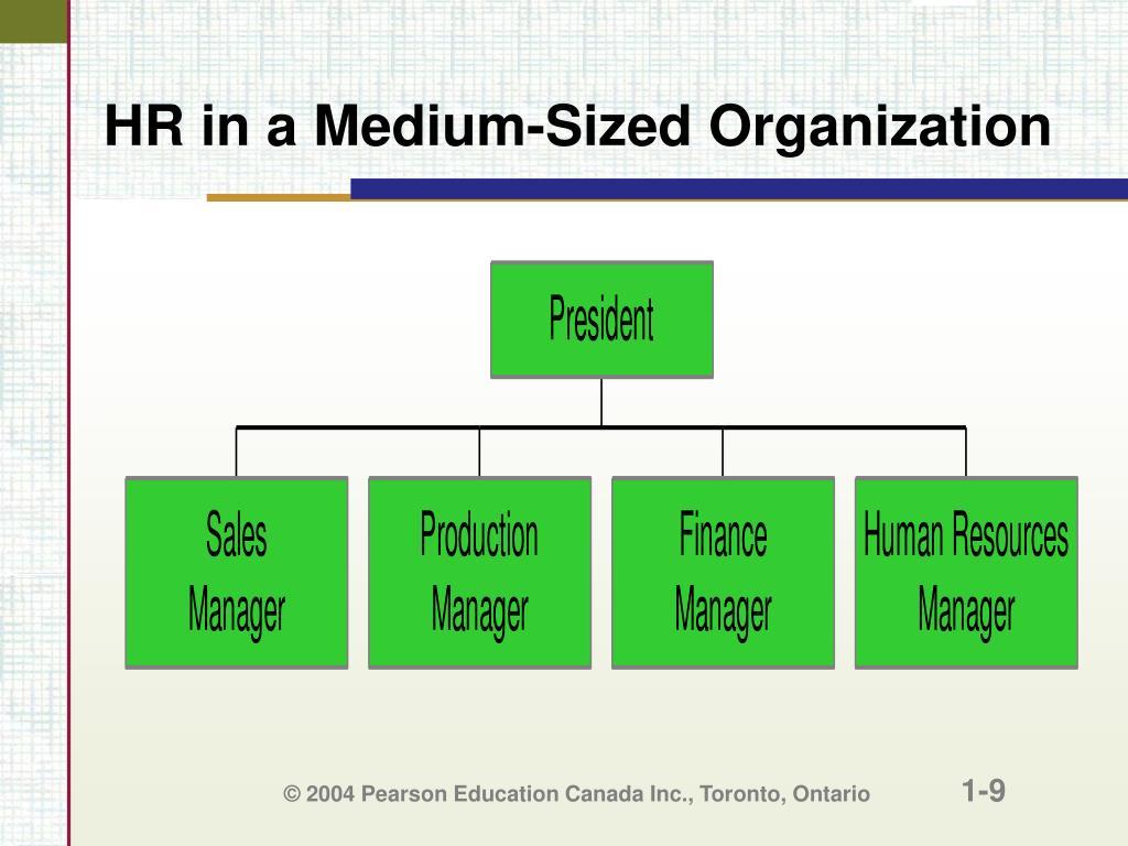 HR in a Medium-Sized Organization