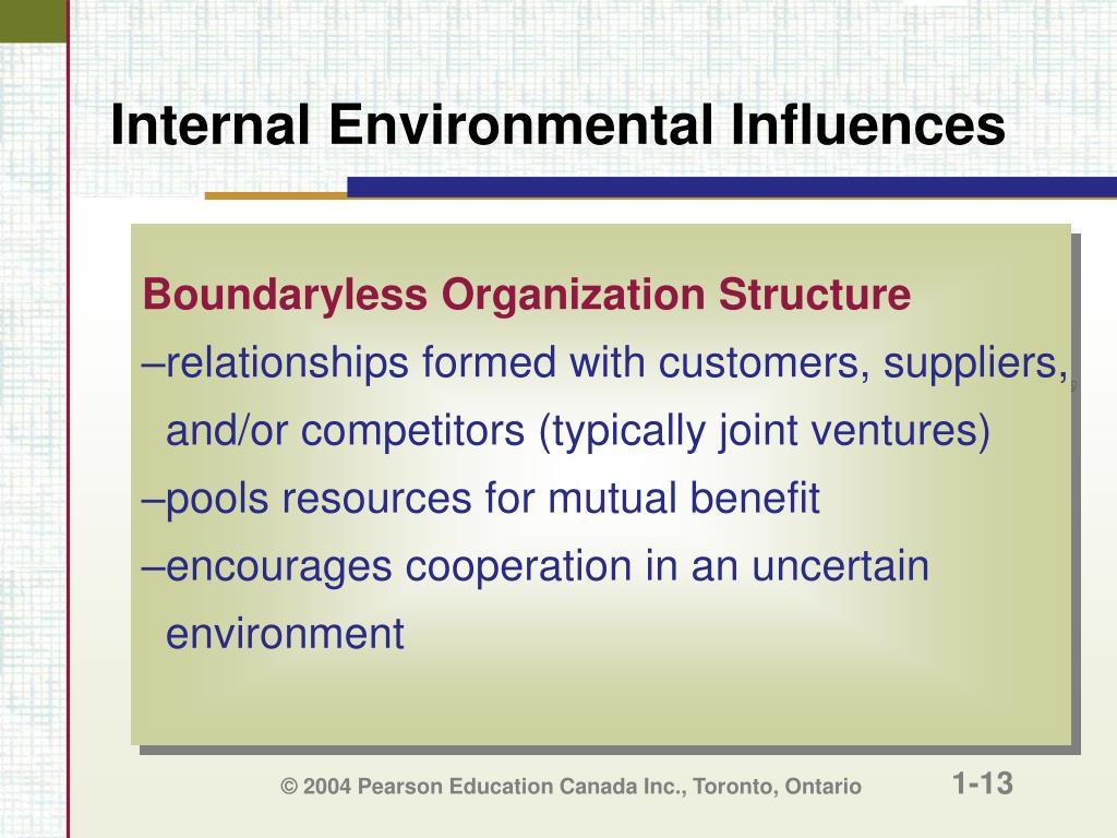Internal Environmental Influences