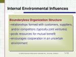 internal environmental influences13