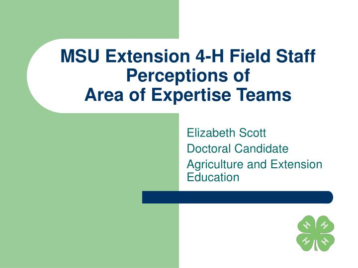 Msu extension 4 h field staff perceptions of area of expertise teams