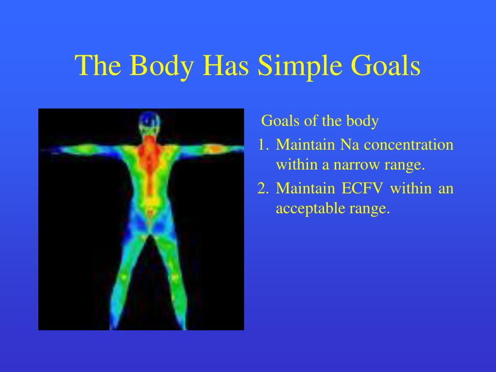 The Body Has Simple Goals