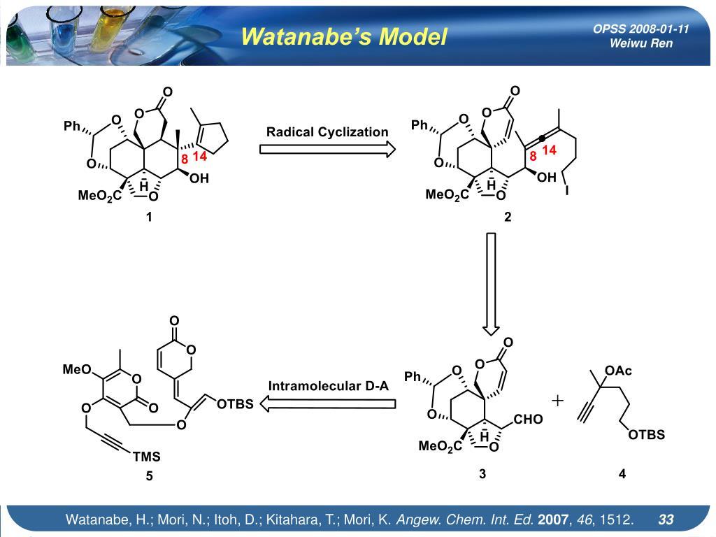 Watanabe's Model