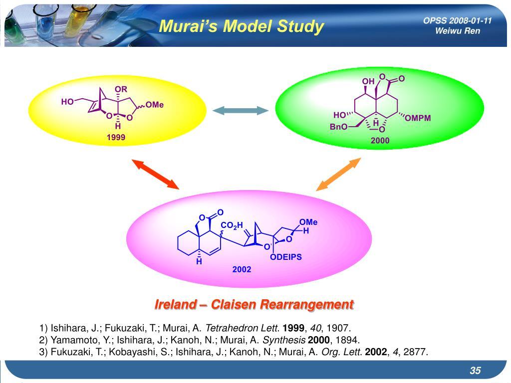 Murai's Model Study