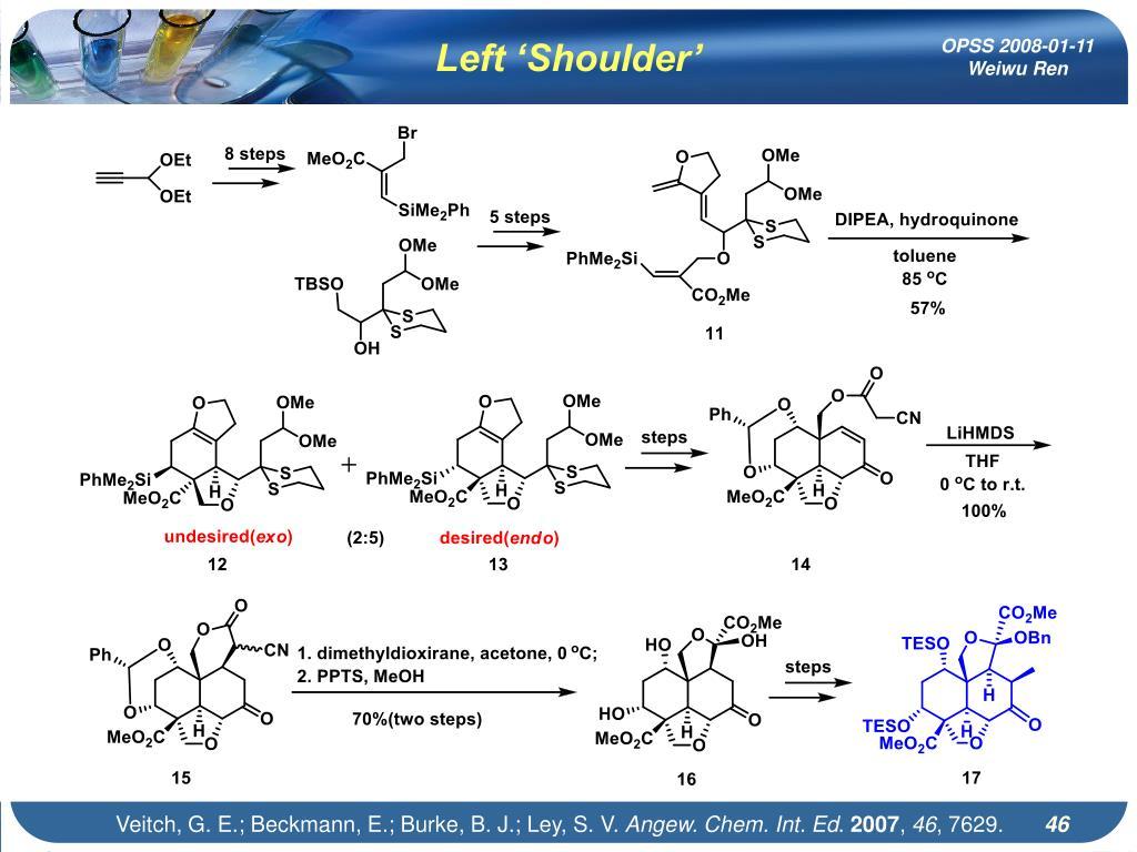 Left 'Shoulder'