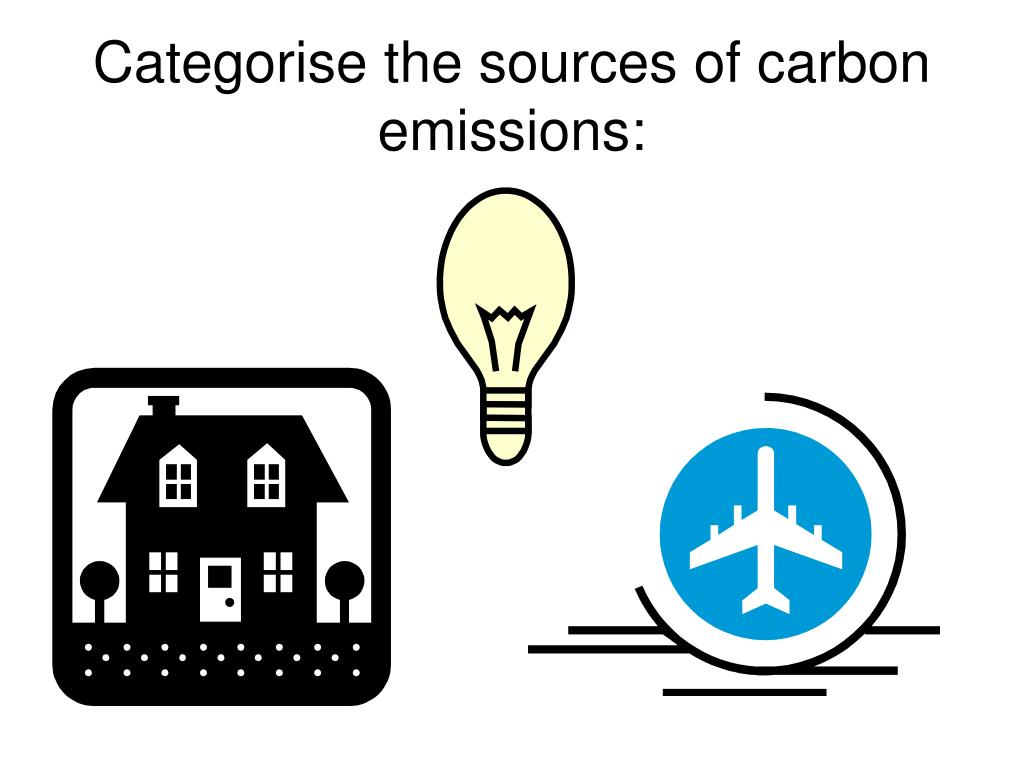 Categorise the sources of carbon emissions: