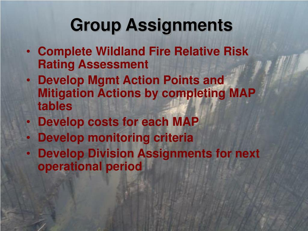 Group Assignments