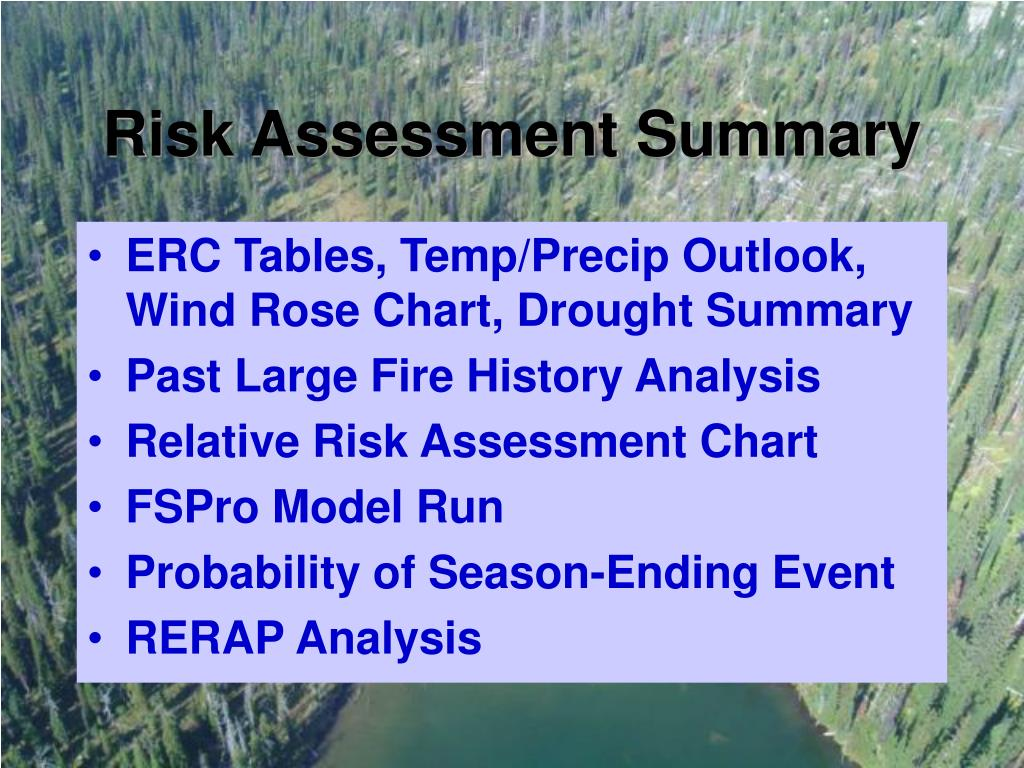 Risk Assessment Summary