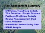 risk assessment summary