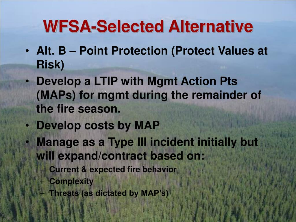 WFSA-Selected Alternative