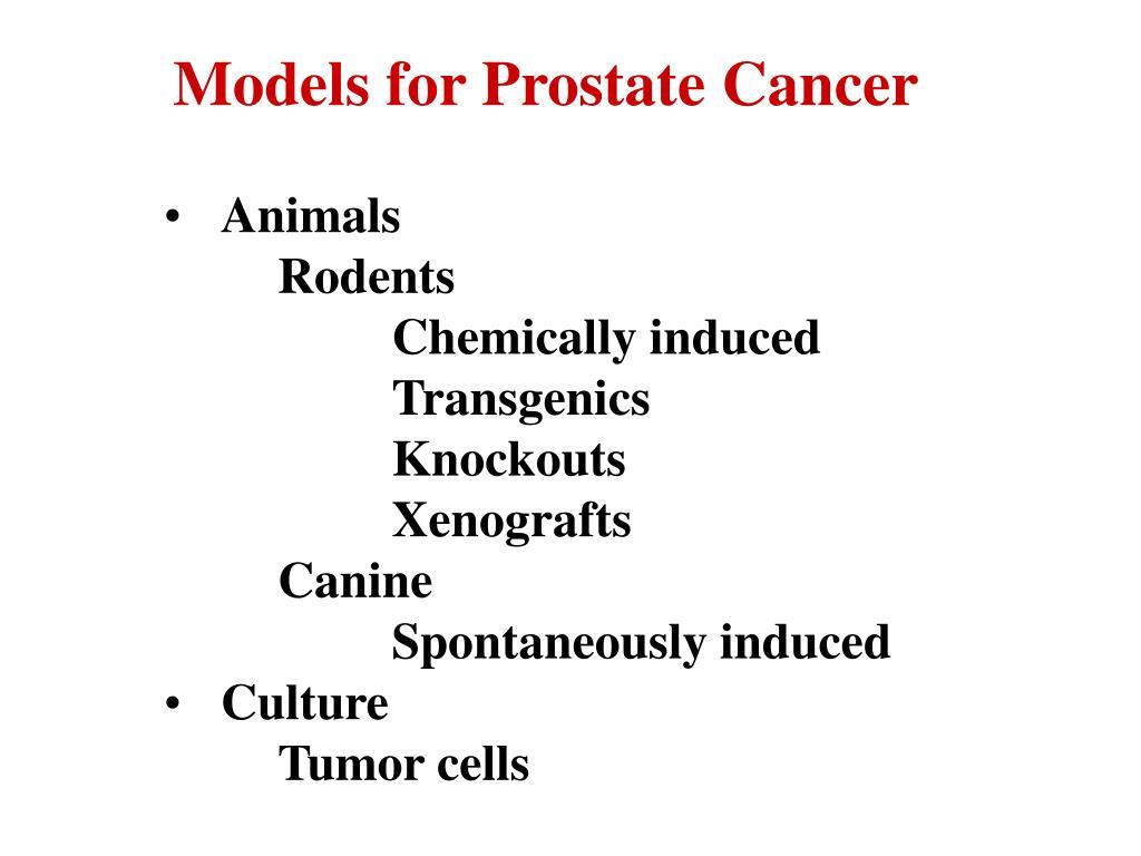 Models for Prostate Cancer