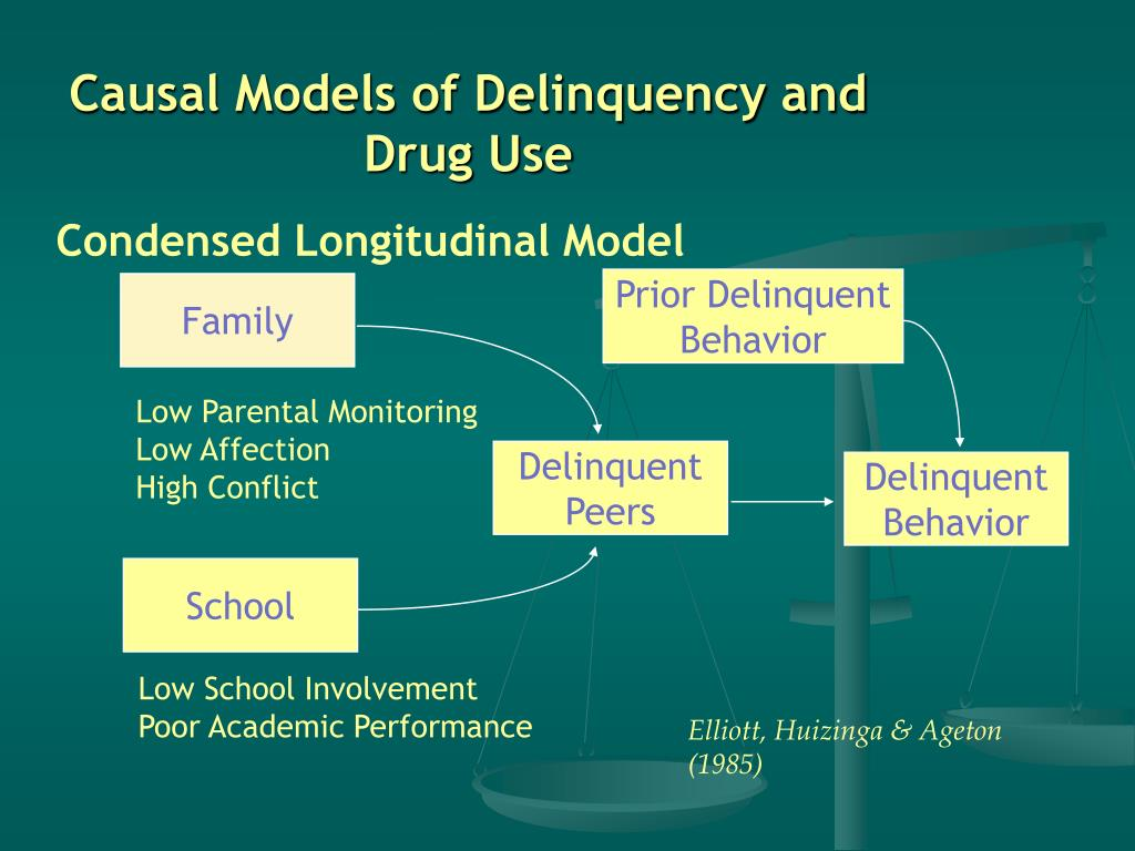 Causal Models of Delinquency and Drug Use