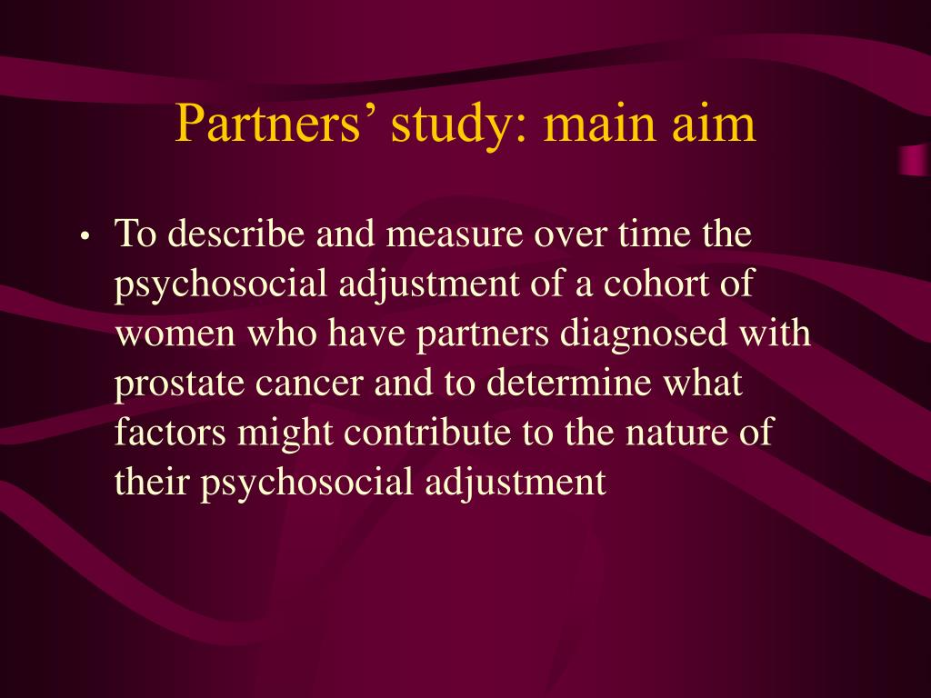 Partners' study: main aim