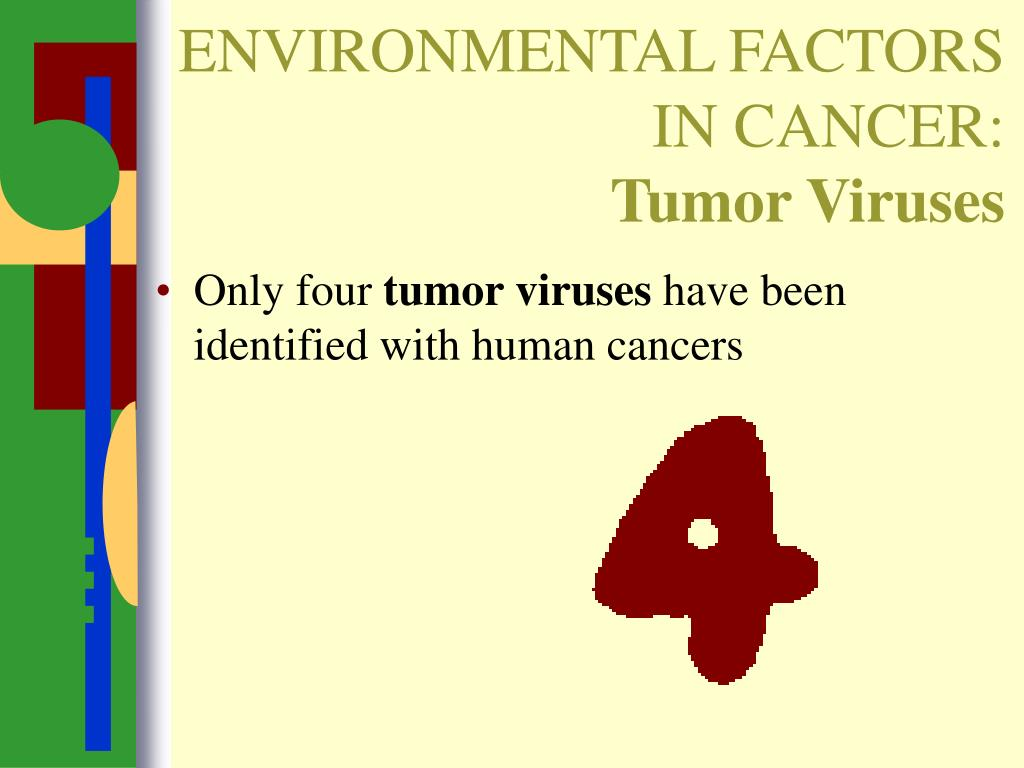 ENVIRONMENTAL FACTORS IN CANCER: