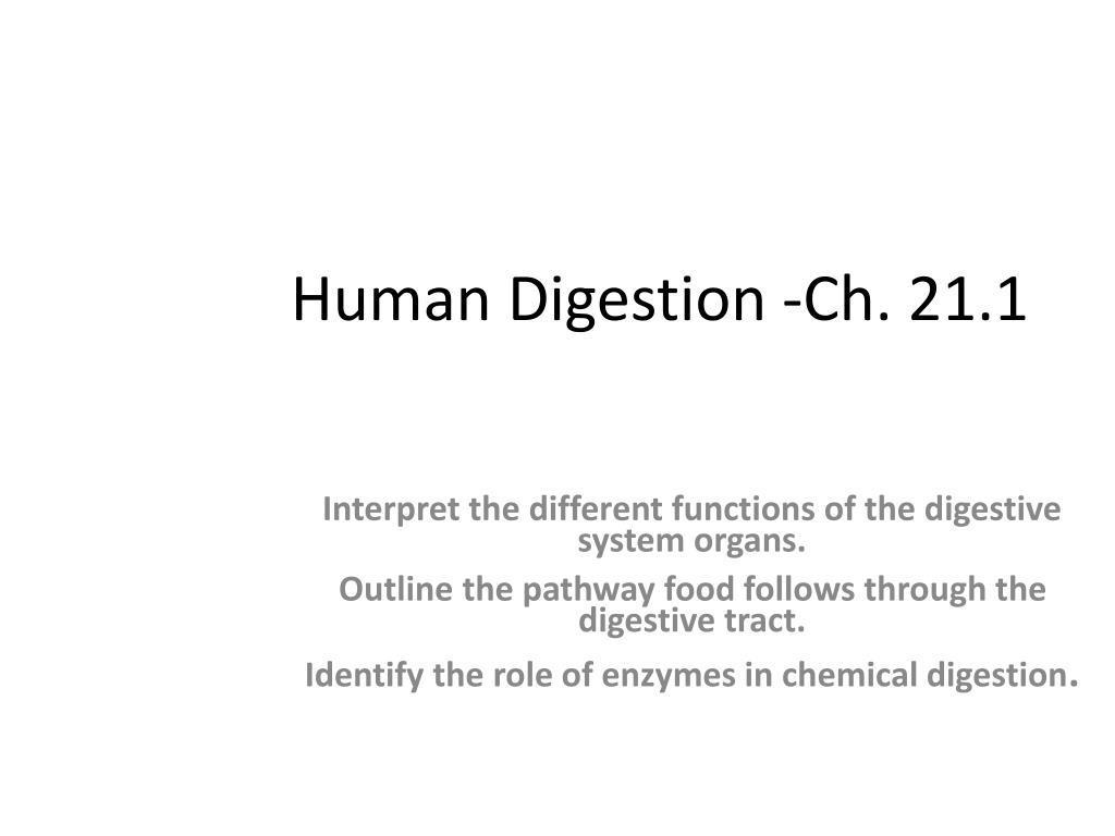 Human Digestion -Ch. 21.1