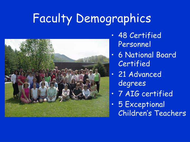 Faculty Demographics