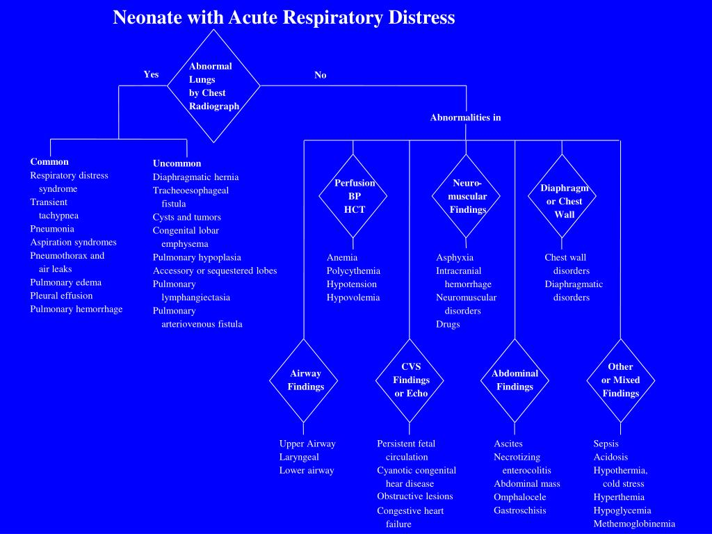 Neonate with Acute Respiratory Distress