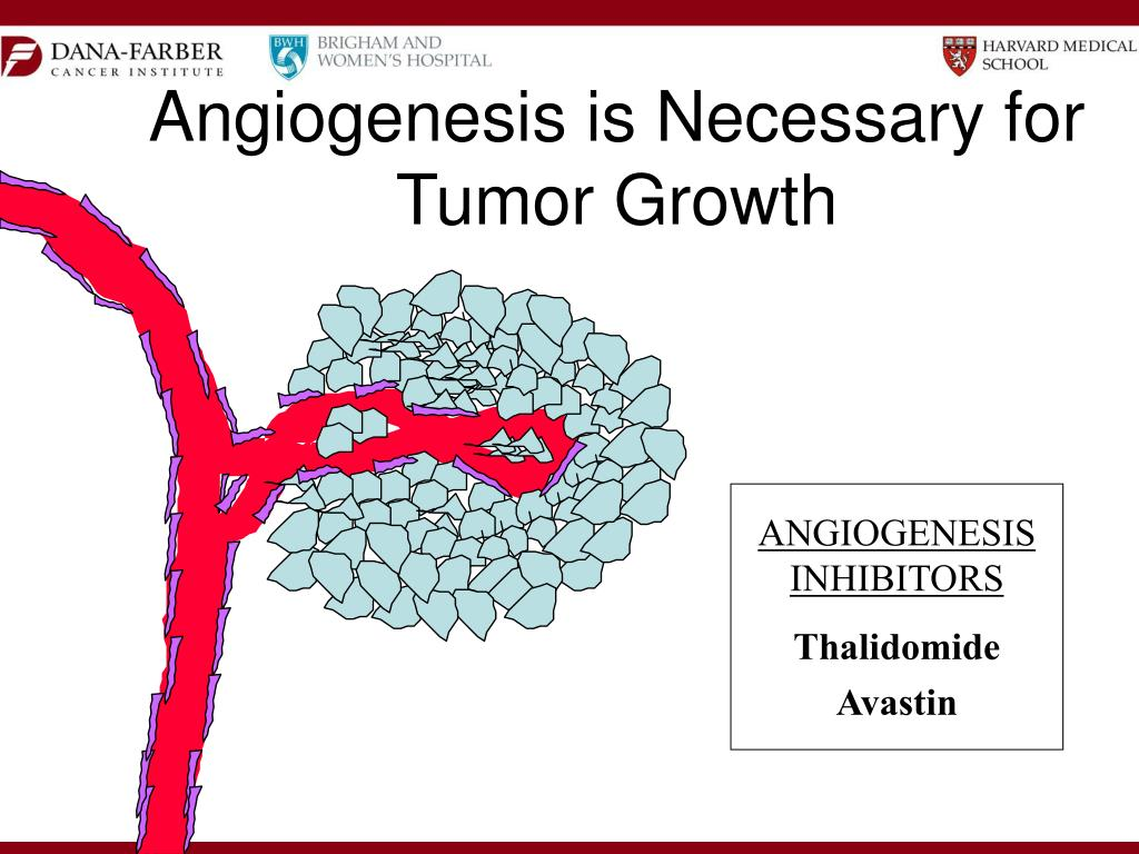 Angiogenesis is Necessary for Tumor Growth