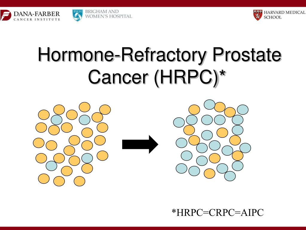 Hormone-Refractory Prostate Cancer (HRPC)*