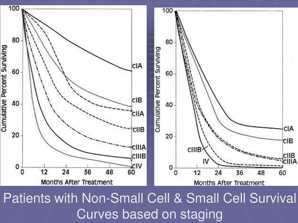 Patients with Non-Small Cell & Small Cell Survival