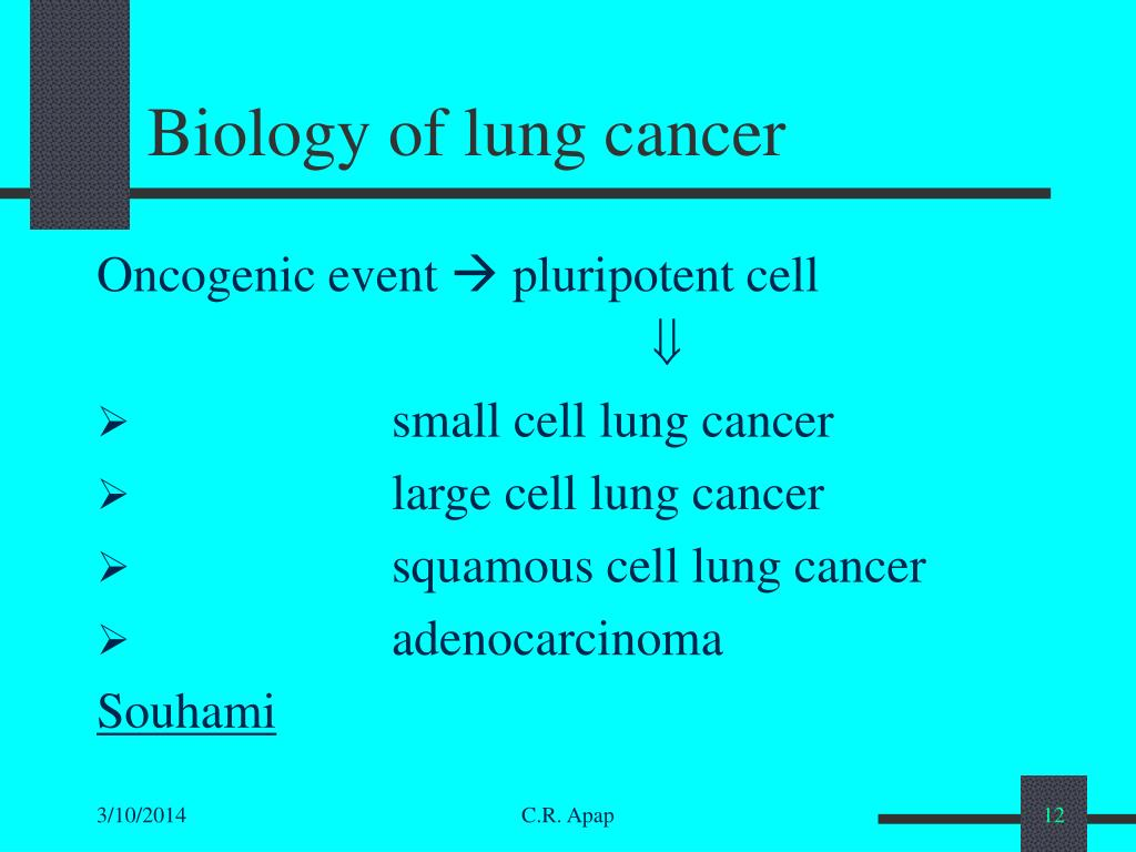 Biology of lung cancer