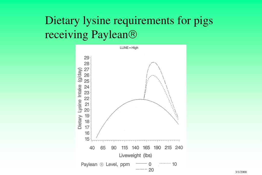 Dietary lysine requirements for pigs receiving Paylean