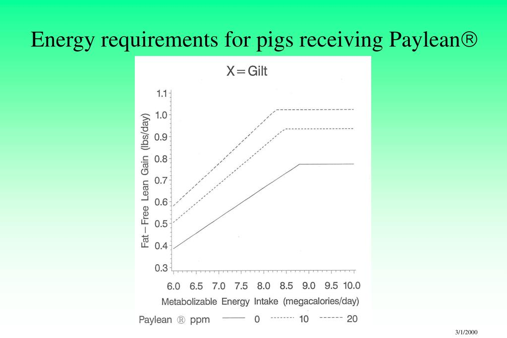 Energy requirements for pigs receiving Paylean
