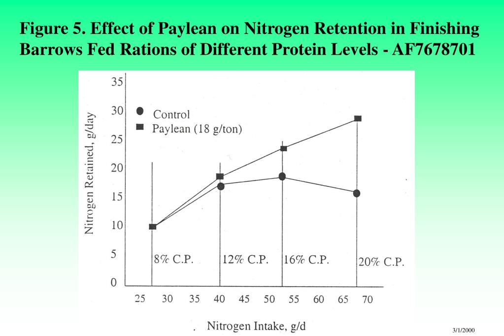 Figure 5. Effect of Paylean on Nitrogen Retention in Finishing Barrows Fed Rations of Different Protein Levels - AF7678701