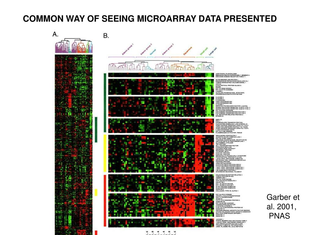 COMMON WAY OF SEEING MICROARRAY DATA PRESENTED