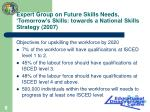 expert group on future skills needs tomorrow s skills towards a national skills strategy 2007
