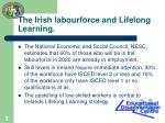 the irish labourforce and lifelong learning